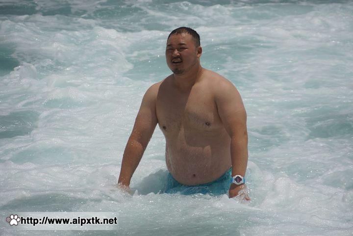 胖熊图片:要的就是这种精彩!