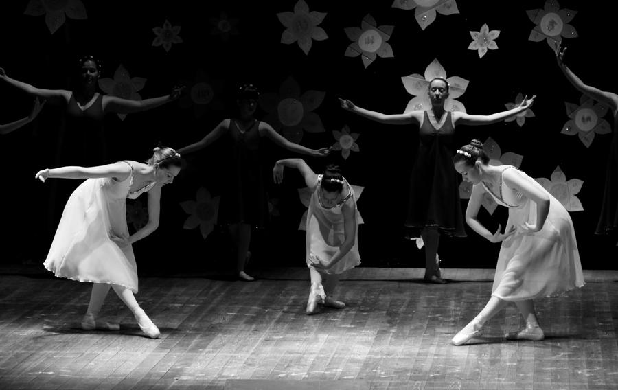 ... 艺术照,舞蹈艺术照_唯美舞蹈艺术照,唯美舞蹈艺术照