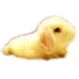 桌面宠物萌小兔 遊戲 App LOGO-APP試玩