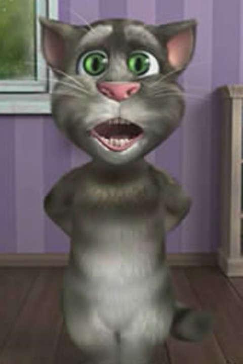 汤姆猫唱遍周杰伦歌