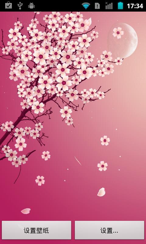樱花浪漫动态壁纸