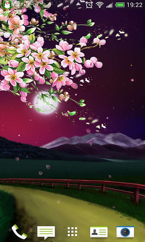 月夜花落-绿豆动态壁纸