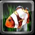 我的3D小鱼动态壁纸