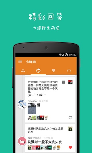 好奇喵|玩社交App免費|玩APPs
