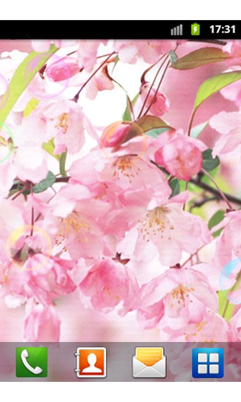 漂亮花朵动态壁纸-应用截图